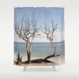 Driftwood Tree I, Lahaina, Maui, Hawaii Shower Curtain