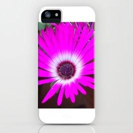 Livingston Daisy iPhone Case