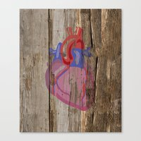 anatomical heart Canvas Prints featuring Anatomical Heart by Kyle Phillips