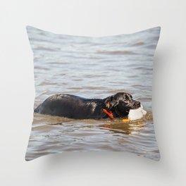 Black Labrador Retriever 4 Throw Pillow