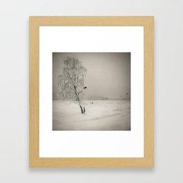 Crows winter - Winter Baltic Sea Serie Framed Art Print