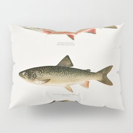 Illustrated North American Freshwater Trout Game Fish Identification Chart Pillow Sham