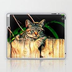 Kitten on a Fence Laptop & iPad Skin