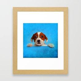 Cute Jack Russell Terrier Puppy Framed Art Print