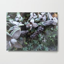 Frost Kissed Metal Print