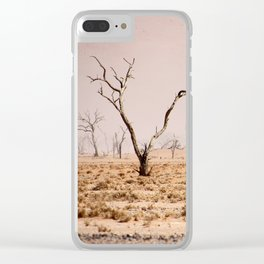 NAMIBIA ... pastel tones III Clear iPhone Case