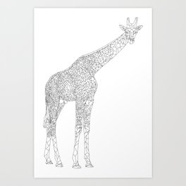 Why The Long Neck? Art Print