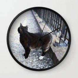 Railway Cat Observing Wall Clock
