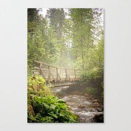 Misty water - Polish Tatra Mountains Nature Reserve Canvas Print