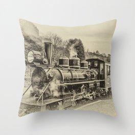 Philadelphia 61269 Antique Throw Pillow