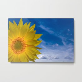 Concept Sunflower Greetingcards Metal Print