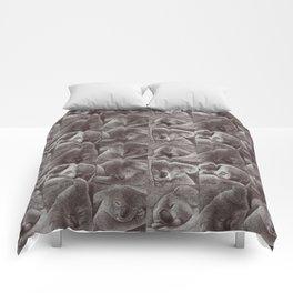 Sleepy Koala Comforters