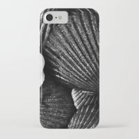 shells iPhone & iPod Cases featuring Shells by SilverSatellite