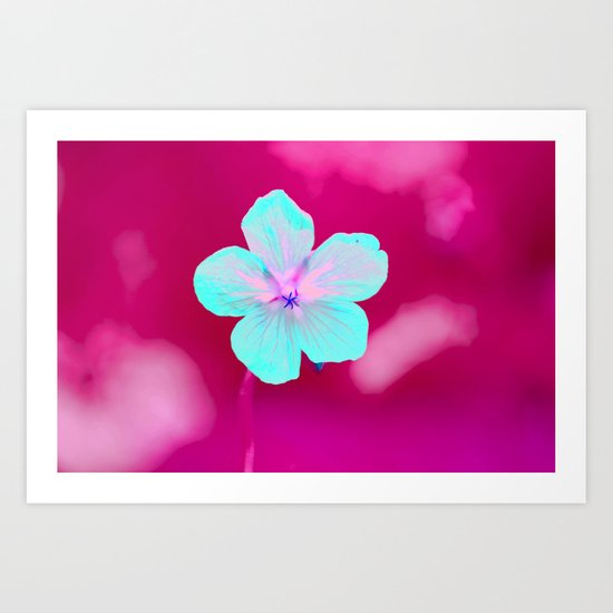 Colorful Flower #1  Art Print