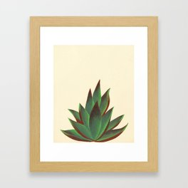 Red and Green Aloe Vera Plant Framed Art Print