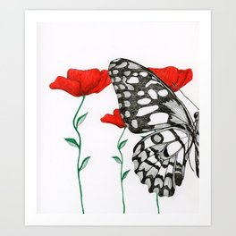 Three Poppies and Half a Butterfly Art Print