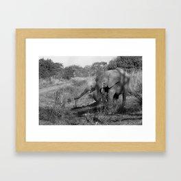 Elephants in Benin Framed Art Print