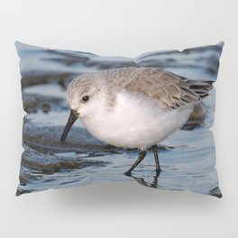A Strolling Sanderling Pillow Sham
