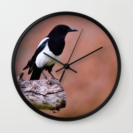 Magpie perched Wall Clock