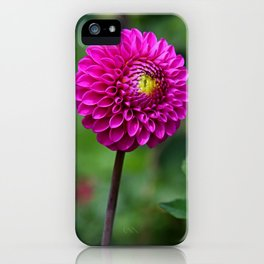 In Pursuit of Forever iPhone Case