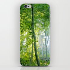 MM - Sunny forest iPhone & iPod Skin