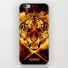 Tigris Beautiful Symmetry iPhone & iPod Skin