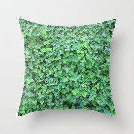 Green Clovers Nature Photo #GaneneKPhotogaphy #StPatricksDay Throw Pillow