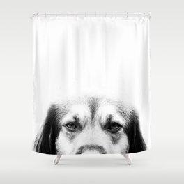 Dog portrait in black & white Shower Curtain