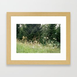Wildflowers 1 Framed Art Print