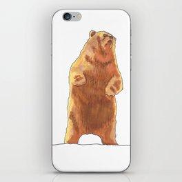 Cute Bear  iPhone Skin