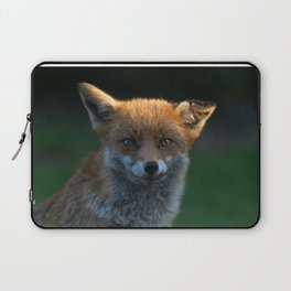 Wild Fox With A Floppy Ear Laptop Sleeve