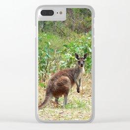 Belair Kangaroo Clear iPhone Case