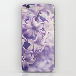 Purple Hyacinth iPhone Skin