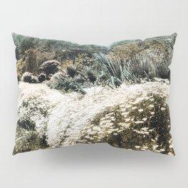 Pasadena, California c.1900 Pillow Sham