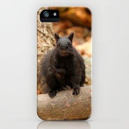 Do you love me iPhone Case