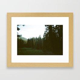 Forest Valley Framed Art Print