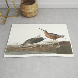Red breasted snipe, Birds of America, Audubon Plate 335 Rug