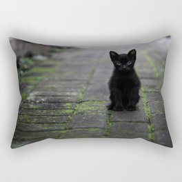 Eyes Only For You Black Kitten Photographic Print Rectangular Pillow