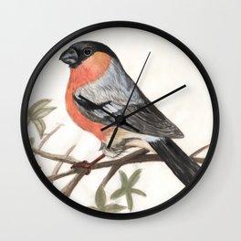 Eurasian bullfinch bird Wall Clock