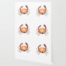 Crab: Fish of Portugal Wallpaper