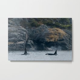 Doublestuf and Cookie Metal Print