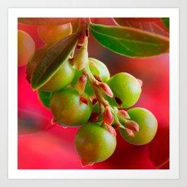 Green Berries Red Background #society6 #decor #buyart Art Print