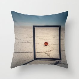 Frame, Apple & Salt Throw Pillow