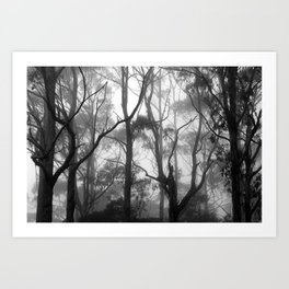 The Clearest Way into The Universe is Through a Forest Wilderness Art Print