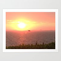 Hawk Hunts at Sunset over the Beach Art Print