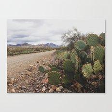 dirt roads Canvas Print