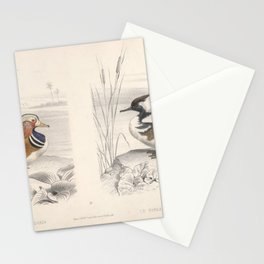 Mandarin duck Hooded Merganser Stationery Cards