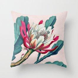 Flowering cactus IV Throw Pillow