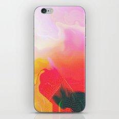 Glitch 05 iPhone & iPod Skin