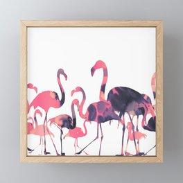 Flamingos Pink Framed Mini Art Print